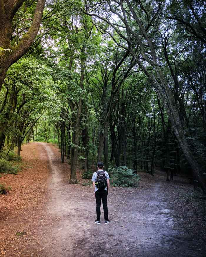 Hombre frente a dos caminos en el proceso de tomar decisiones.