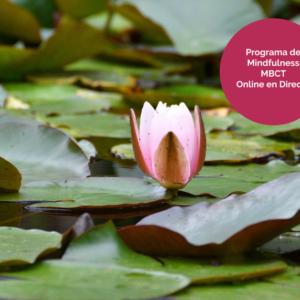 Programa de Mindfulness MBCT. Primavera de 2021.