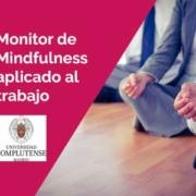 almudena de andres monitor mf ucm - Monitor de Mindfulness aplicado al trabajo UCM (online). Junio 2021