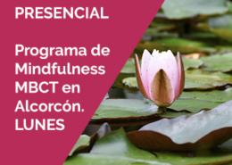 almudenadeandres mbct alcorcon - Programa de Mindfulness MBCT. Alcorcón. Lunes. Grupos de mañana y tarde. 4 de Octubre 2021